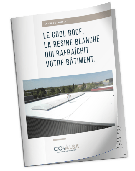 Ebook cool Roof
